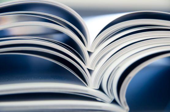 Tudományos tevékenység, publikációk